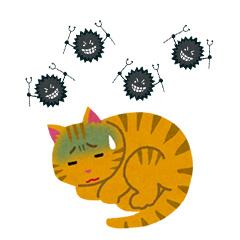 1.ウイルス検査