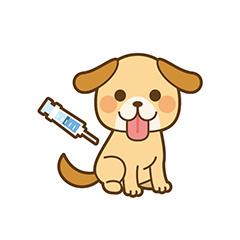 1.狂犬病予防接種
