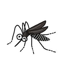 3.フィラリア予防