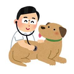 1.シニアの動物に優しい診療