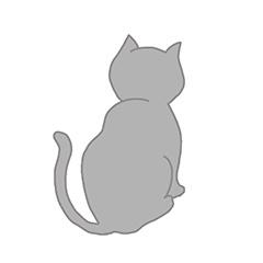 ネコちゃんは症状や痛みを隠す動物です